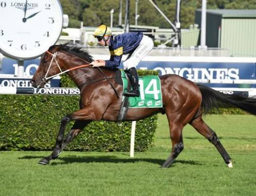 Strong Entries For $200,000 Scone Inglis Guineas At Rosehill